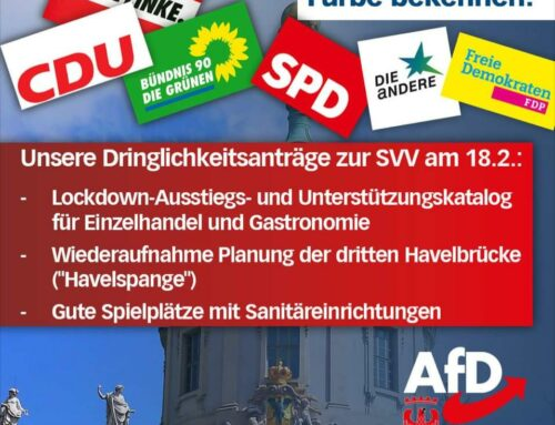 Bericht der AfD-Stadtfraktion aus der heutigen SVV
