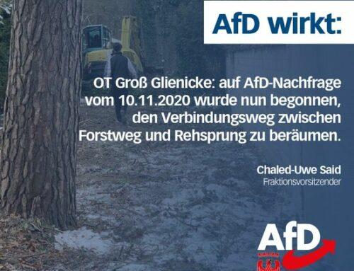 AfD wirkt: